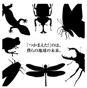 カワサポ達成プロジェクト第1号「合瀬川の生きものマップを作る!」 祝・完成!!!