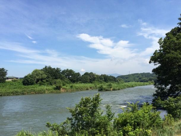 矢作川本流。随分水量が多いです。