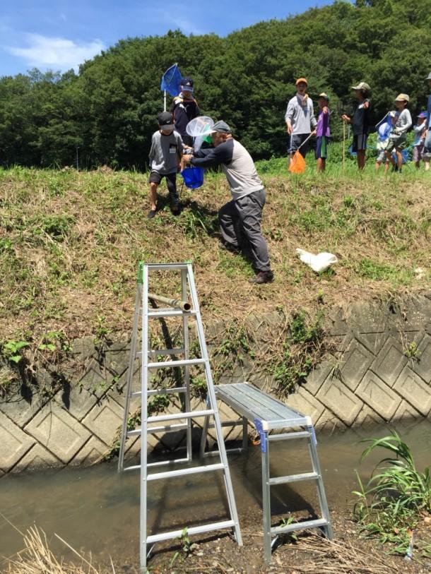 自治会の皆さんに設置してもらったはしごを使って川に降ります。