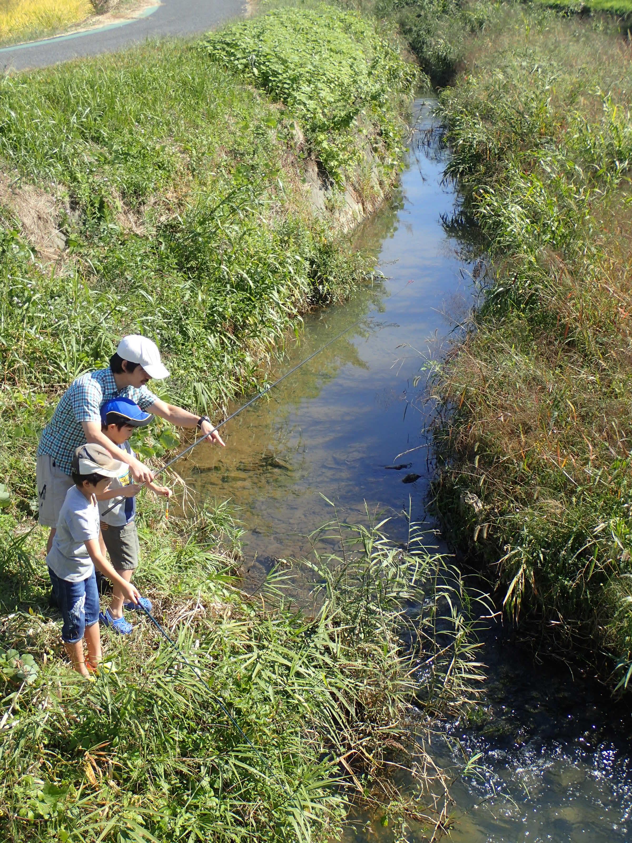 豊田市 ふるさとの川づくり事業「第2回岩本川探検隊」を実施しました!