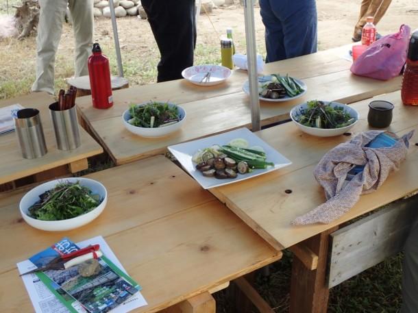 サラダやカレーに乗せる野菜はもちろん、横の畑で獲れたもの。