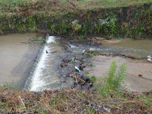 昨年浚渫した区間。落差が大きくなりました。ゴロゴロしている石は昔設置した蛇籠の石。