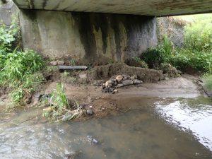 今年実施中の浚渫区間最上手の橋の下に何かあるぞ?
