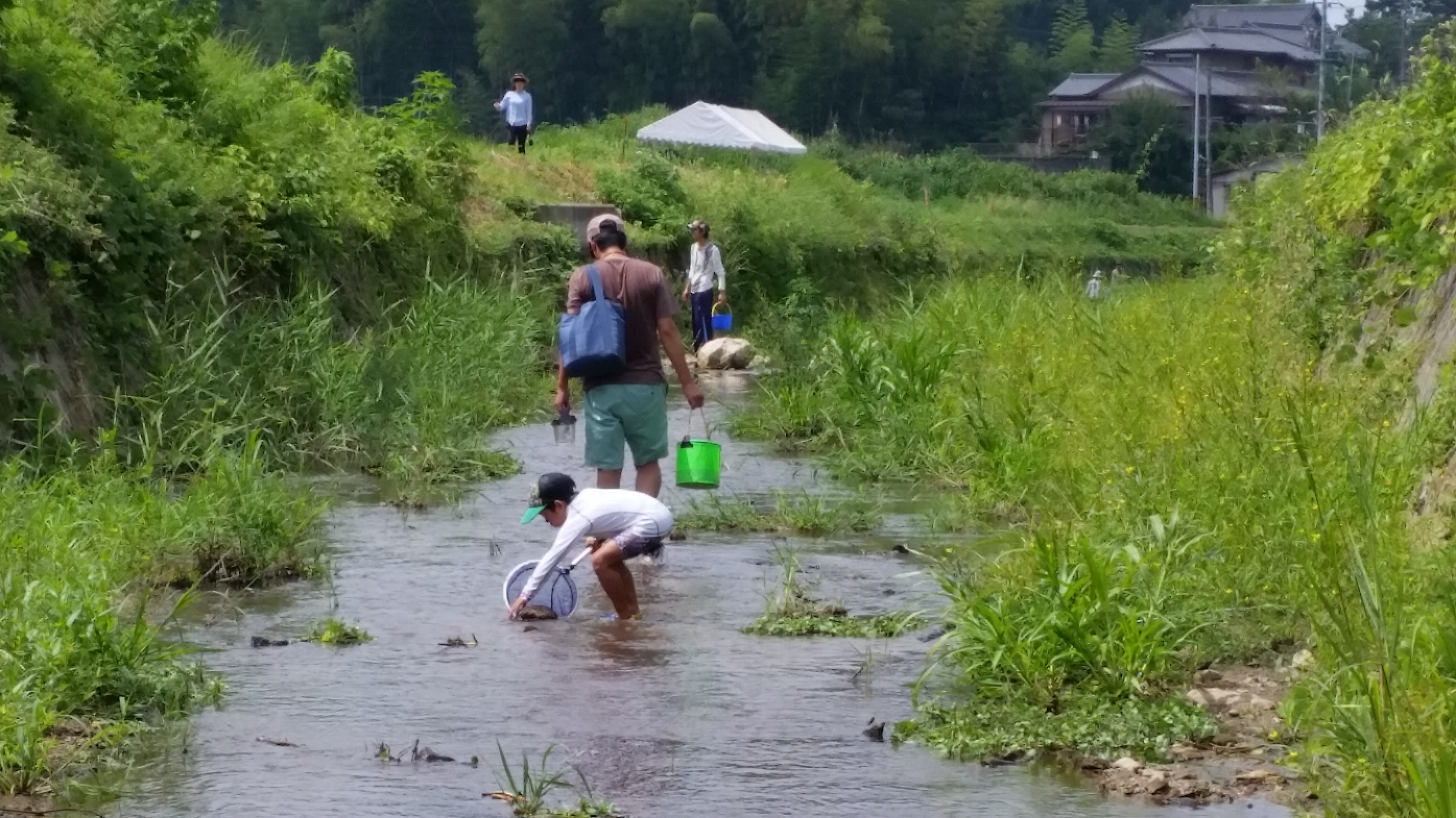 8月20日実施の岩本川探検隊