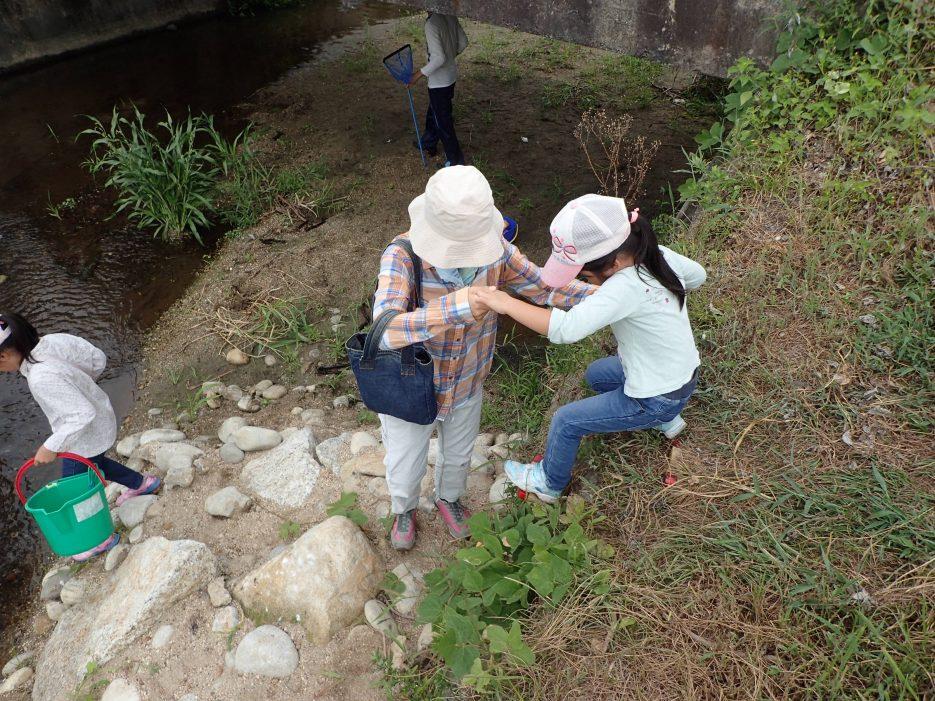 この足場は前回の川づくり体験会にて作ったもの。子供が川に降りられるように。