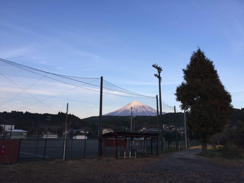 ▲富士山からの湧水で、一年中安定した水温が保たれている芝川。