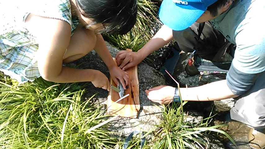 【子供が自力で魚をとって食べるパーティー】in 野原川観光センター