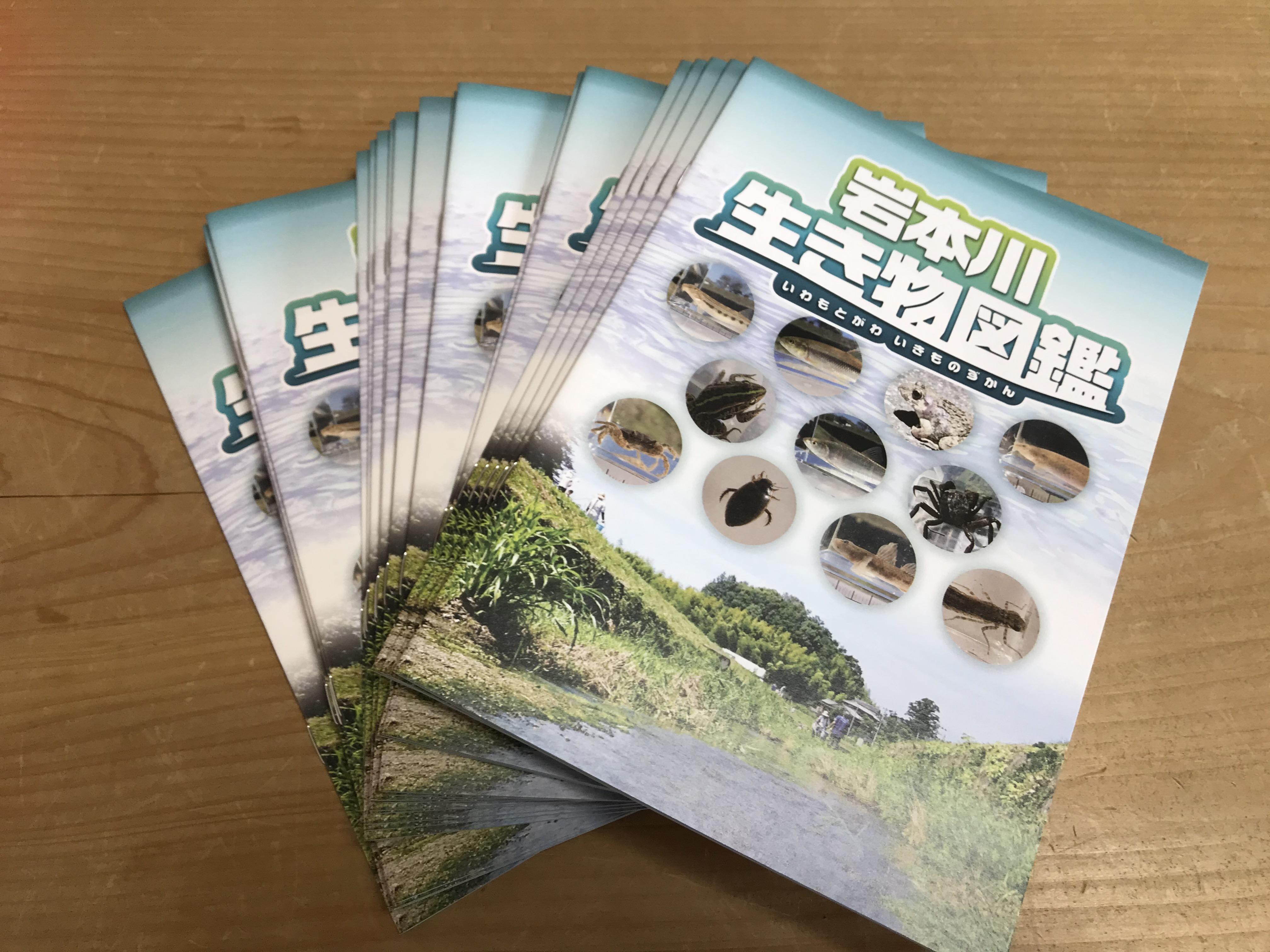 岩本川生き物図鑑完成しました!